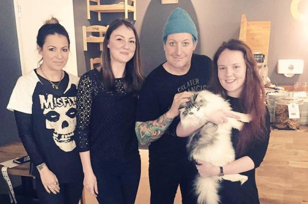 tre-cool-cat-cafe